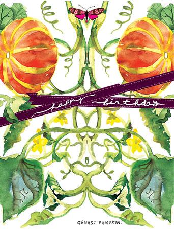 botanicus pumpkin plant nature watercolor Masha D'yans