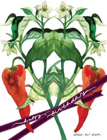 botanicus hot stuff pepper plant watercolor Masha D'yans