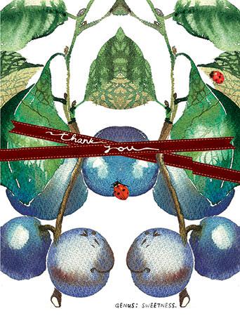 botanicus plums nature watercolor masha d'yans