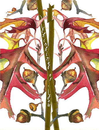 botanicus acorns maple tree plant watercolor Masha D'yans