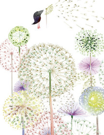 Dandelions August Bird watercolor greeting card by Masha D'yans