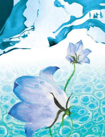 bluescape watercolor masha dyans