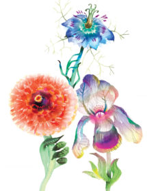 3 flowers leaf hands watercolor masha dyans