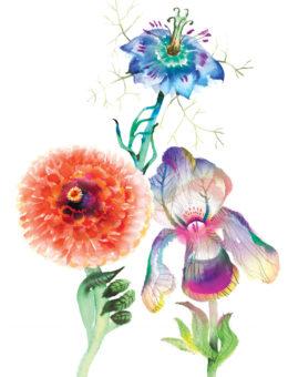 3 flowers leaf hands watercolor masha dyans