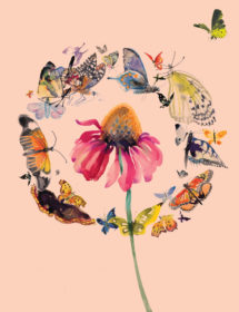 butterfly circle watercolor masha dyans