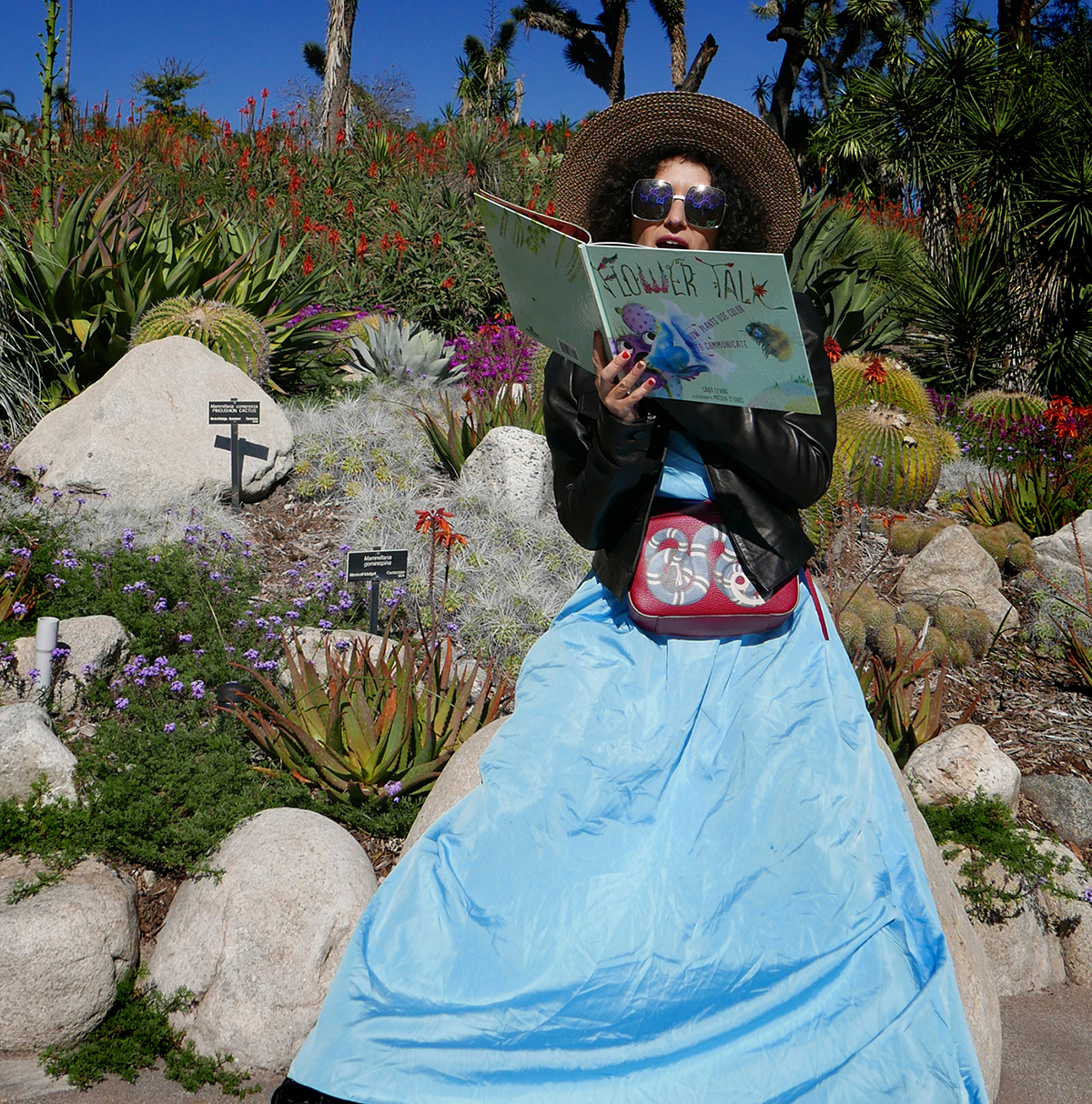 Flower Talk book by Masha D'yans reading in succulents