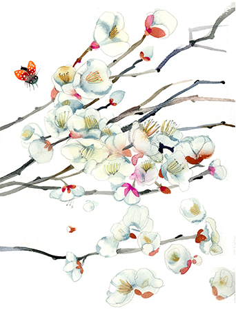 G107-apple-blossoms-ladybug-watercolor-masha-dyans