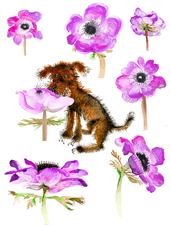 G109-poppy-puppy-watercolor-masha-dyans