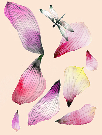 Petals Dragonfly watercolor greeting card by Masha D'yans