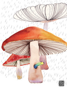 G46 mushroom worm rain masha dyans watercolor greeting card