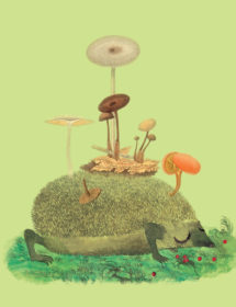HDG1-mushroom-hedgehog-masha-dyans-watercolor-greeting-card