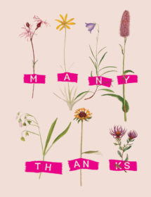 HRB2-thanks-herbs-masha-dyans-watercolor-greeting-card