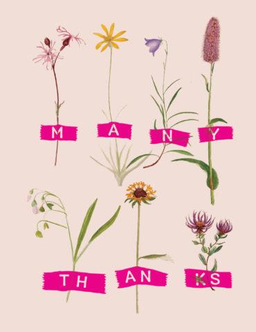 HRB2-thanks-herbs-masha-dyans-watercolor-greeting-card