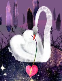 Swan Lake Night watercolor greeting card by Masha D'yans