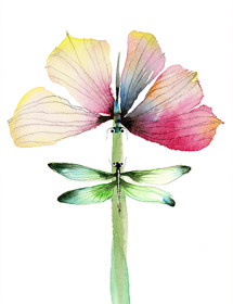 BUTTERFLY DRAGONFLY UNION watercolor greeting card by Masha D'yans