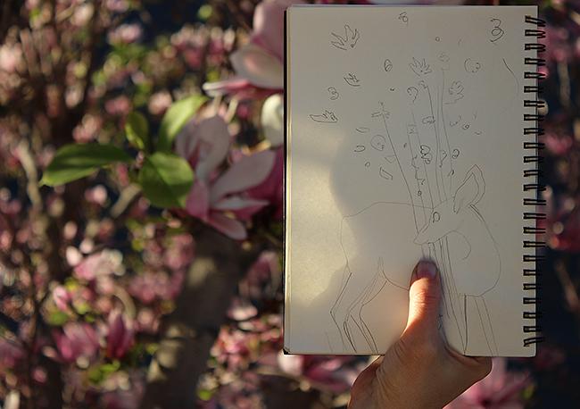 fawn-sketch-masha-dyans