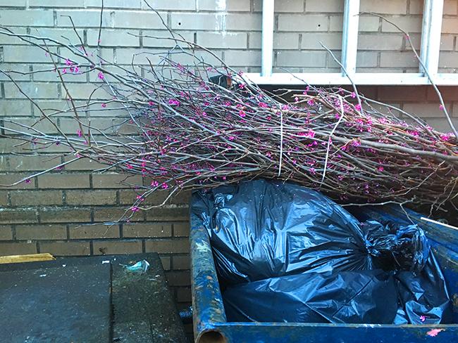 spring garbage new york
