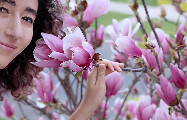 masha-dyans-magnolia-smell