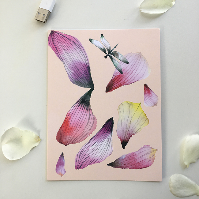 A dragonfly and delicate petals for Valentine's Day.